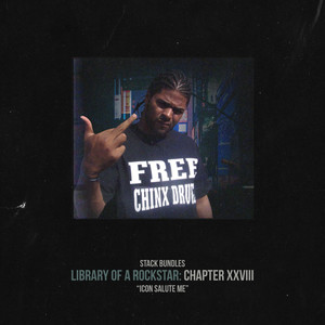 Library of a Rockstar: Chapter 28 - Icon Salute Me