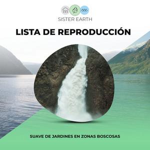 Lista de Reproducción Suave de Jardines en Zonas Boscosas