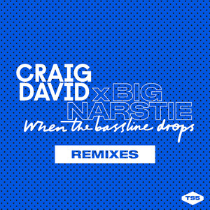 When the Bassline Drops (Remixes)