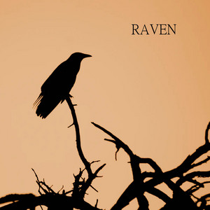 Raven cover art