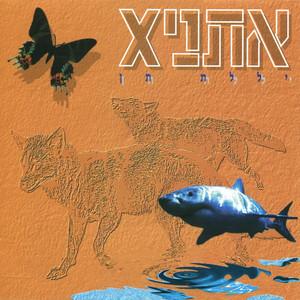 יללת תן - Ethnix