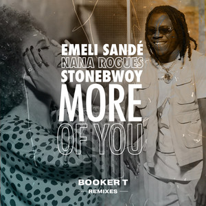 More of You (Booker T Remixes)