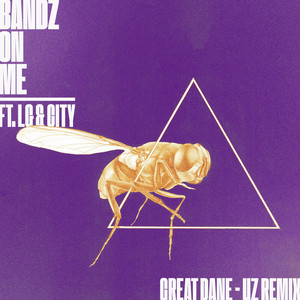 Bandz On Me (UZ Remix)