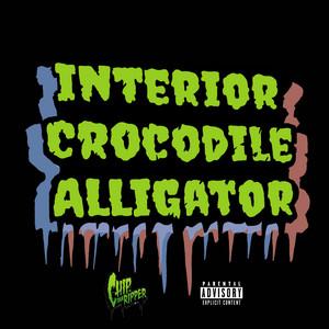 Interior Crocodile Alligator