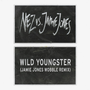 Wild Youngster (feat. ScHoolboy Q) [Jamie Jones' Wobble Remix]