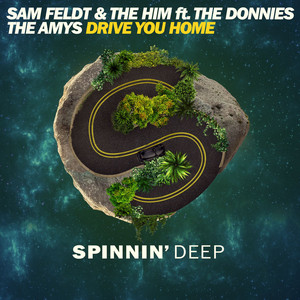Drive You Home (feat. The Donnies The Amys) [Radio Edit]