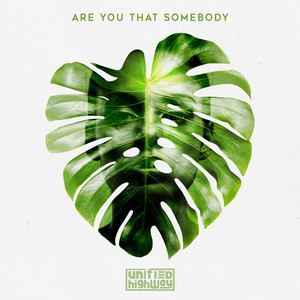 Are You That Somebody