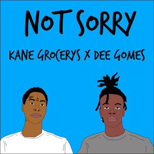 Not Sorry (feat. Dee Gomes)