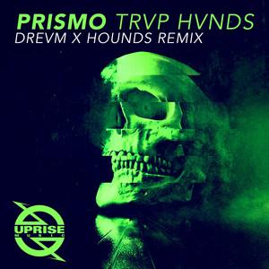 TRVP HVNDS (DREVM X HOUNDS Remix)