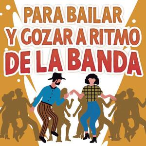 Para Bailar y Gozar A Ritmo De La Banda album