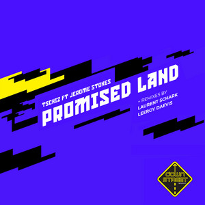 Promised Land - Leeroy Daevis Remix cover art