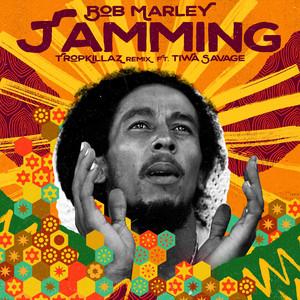 Jamming - Tropkillaz Remix (Extended Instrumental) by Bob Marley & The Wailers, Tiwa Savage, Tropkillaz