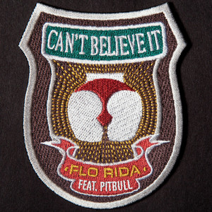 Flo Rida feat. Pitbull - Can't believe i