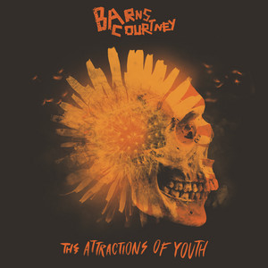 The Attractions Of Youth