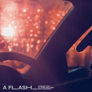 A FLASH_
