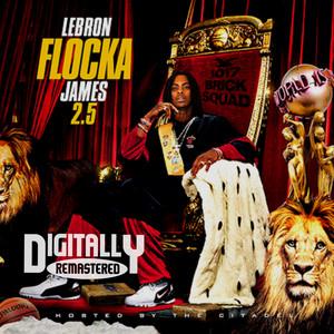 LeBron Flocka James 2.5