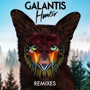 Hunter (Remixes) Albümü