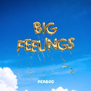 Big Feelings (feat. Aklesso)