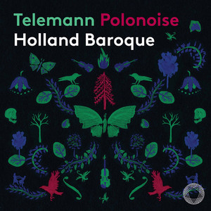 Polish Dances, TWV 45 (Excerpts Arr. J. Steenbrink & T. Steenbrink for Strings & Continuo): No. 9, Polonoise