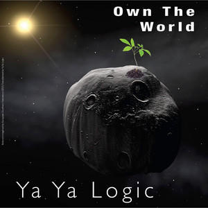 Own the World album