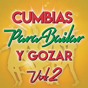 Cumbias Para Bailar Y Gozar Vol. 2 - Selena