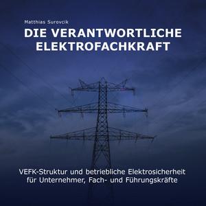 Die Verantwortliche Elektrofachkraft (VEFK-Struktur und Betriebliche Elektrosicherheit für Unternehmer, Fach und Führungskräfte) Audiobook