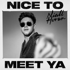 Niall Horan – Nice to meet ya (Acapella)