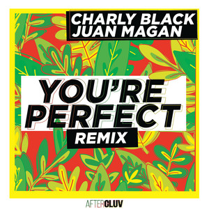 You're Perfect - Remix