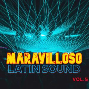 Maravilloso Latin Sound Vol. 5
