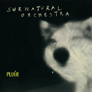 Ayez pitié by Surnatural Orchestra