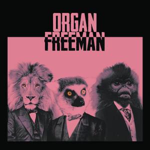 Verve by Organ Freeman