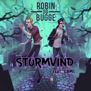 Stormvind (feat. 6AM)