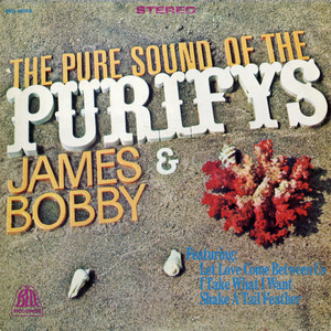 The Pure Sound Of The Purifys album
