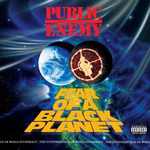Fear Of A Black Planet album