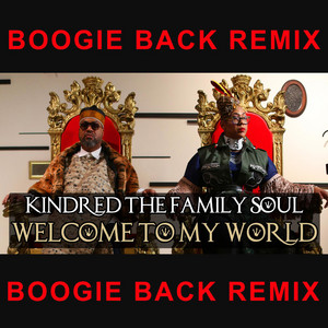 Welcome to My World (Boogie Back Remix)