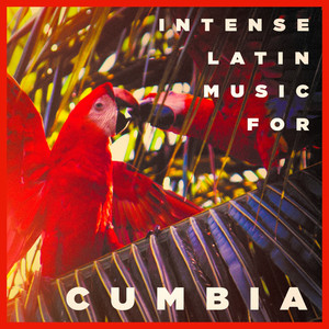 Intense Latin Music For Cumbia album