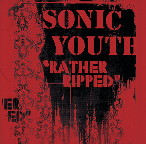 Incinerate by Sonic Youth