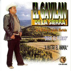 El Gavilan De La Sierra