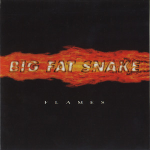 I Need You by Big Fat Snake