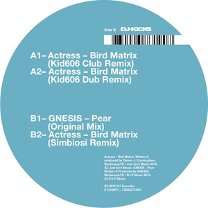 Bird Matrix (Remixes)