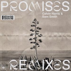 Promises (with Sam Smith) [Remixes]