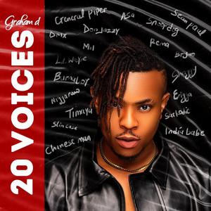 20 Voices
