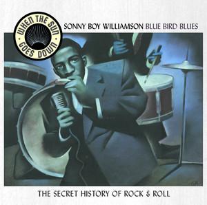 Bluebird Blues - When The Sun Goes Down Series album