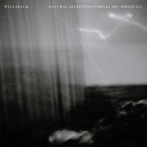 Natural Selection by Willaris. K