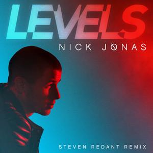 Levels (Steven Redant Remix)