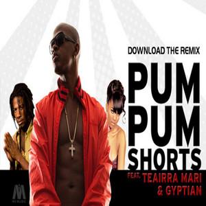 Pum Pum Shorts (feat. Gyptian & Teairra Mari)