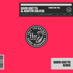 Thing For You (David Guetta Remix) [Extended]