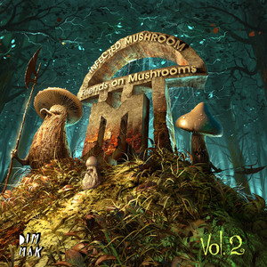 Infected Mushroom ft Kelsy Karter – Now Is Gold (Studio Acapella)