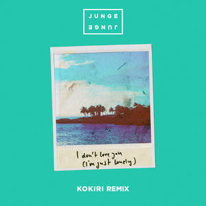 I Don't Love You (I'm Just Lonely) [Kokiri Remix]