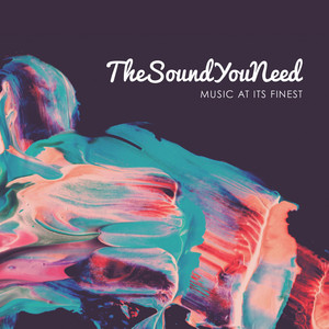 TheSoundYouNeed, Vol. 1 album